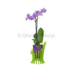 Grünke® Design Pflanzensessel